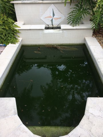 Swimming Pool Gallery View Our Pool Cleaning And Repair