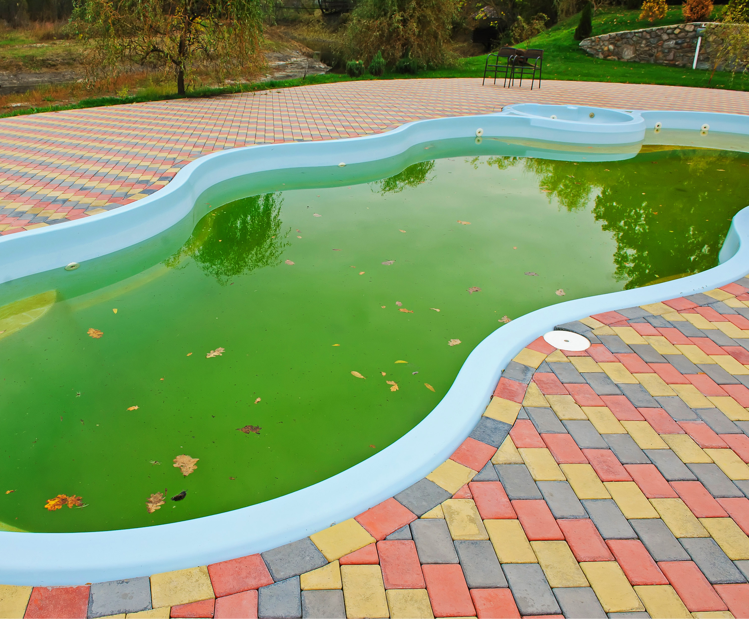 Green pool cleaning in South Florida